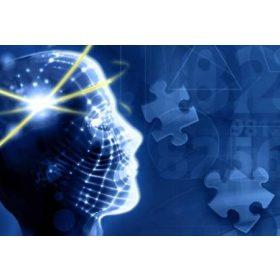 Memória- és koncentrációfokozó