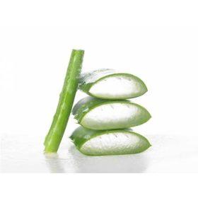 Aloe vera italok