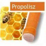 Naturhelix Fülgyertya Propolisz (10 db)