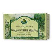 Herbária Filteres tea Galagonya virágos hajtásvég (20x1 g)