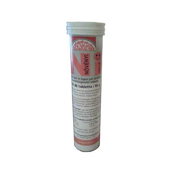 Egészségfarm Növényi inulin tabletta (240 db)